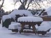 16.07.10 - Winterimpressionen I