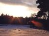 16.07.10 - Winterimpressionen II