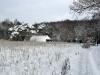 02.05.10 - Winter am Wacholderhain