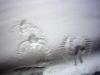 02.05.10 - Spuren im Schnee