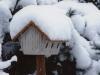 31.07.10 - Vogelhaus im Winter