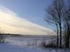 Winterbild Foto: Petra Kuhlmann
