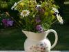31.07.10 - Blumen Stillleben