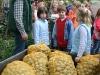 Kartoffelfest Aug 2009 - Foto: Hubert Westerhoff