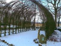 Winterschlaf hält das lebendiche Dach der Weidenkirche in Börger